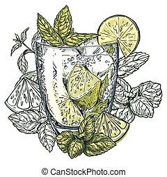 fette, foglie, cocktail, mojito, menta, calce