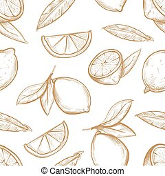fette limone, agrume, modello, foglie, seamless, mano, vettore, limoni, fiore, disegnato, ramo