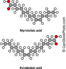 fettig, (omega-7), (omega-5), palmitoleic, molecules.,...