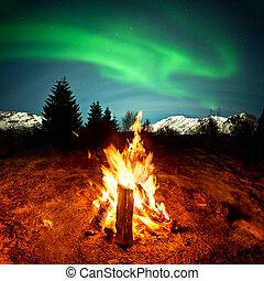 feu camp, regarder, lumières septentrionales