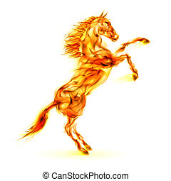 feuer, aufbäumen, pferd, auf.