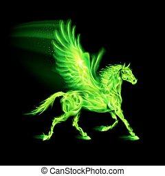 feuer, pegasus., grün