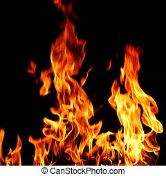feuer, schließen, flamme, auf