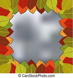 feuillage automne, fond, brouillé