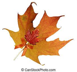 feuille, érable, bonbon, automne