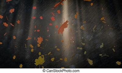 feuille, 4k, automne, faisceau, soleil, tomber, contre