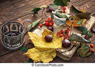 feuille, automne, automne