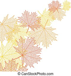 feuille, bacground, macro, automne, vecteur, maple.