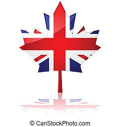 feuille, britannique, érable