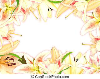 feuille, cadre, vert, floral, fleurs, lis