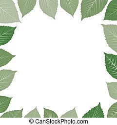 feuille, cadre, vert