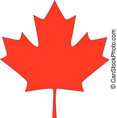 feuille, canadien, illustration, vecteur, icon., érable