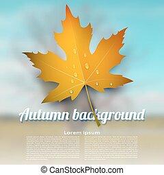 feuille, coloré, résumé, brouillé, automne, arrière-plan., vecteur, gouttes pluie, érable