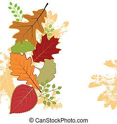 feuille, coloré, résumé, salutation, automne, carte