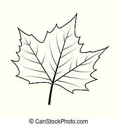 feuille, contour, automne, fond, blanc, icône