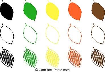 feuille, couleur, feuilles, ensemble, hêtre