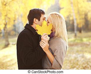 feuille, couple, parc, jeune, jaune, automne, baisers, portrait, fermer, érable, aimer