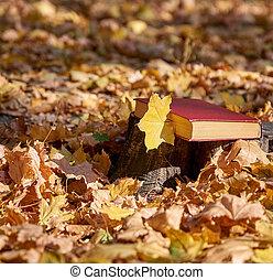 feuille, couverture, jaune, livre, érable, fermé, rouges