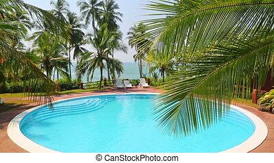 feuille, exotique, recours, paume, mer, piscine, natation