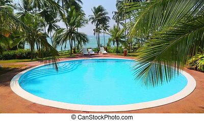 feuille, exotique, recours, paume, piscine, natation