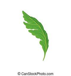 feuille, flower., illustration, arrière-plan., vecteur, blanc vert