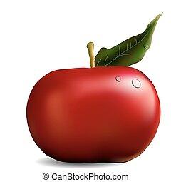 feuille, fond, isolé, vecteur, pomme, blanc rouge