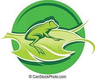 feuille, grenouille, vert
