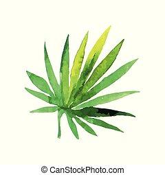 feuille, illustration, main, aquarelle, paume, vecteur, vert, dessiné, ventilateur