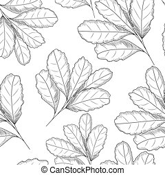feuille, illustration., pattern., seamless, main, vecteur, dessiné, gravé, style.