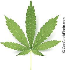 feuille, illustration., réaliste, monde médical, isolé, marijuana, cannabis, vecteur, fond, icon., blanc