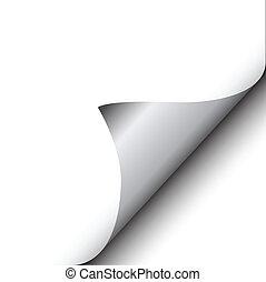 feuille, isolé, illustration, unique, vecteur, icône