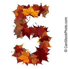feuille, isolé, multicolore, cinq, automne, nombre, composition