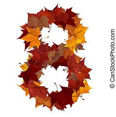 feuille, isolé, multicolore, huit, automne, nombre, composition
