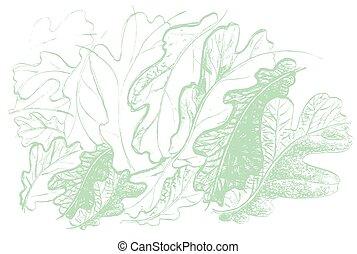 feuille, nature, defoliation, chêne, automne, arbre.