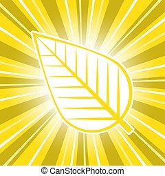 feuille, or, levers de soleil, lueur