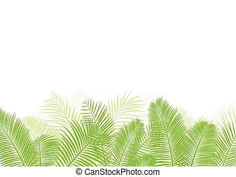 feuille, paume, vecteur, arbre, fond