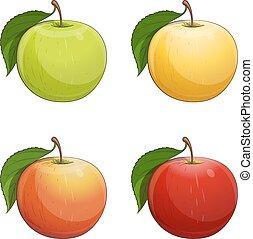 feuille, pomme verte, mûre