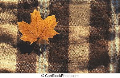 feuille, sommet, jaune, automne, chaud, fond, plaid, érable, vue