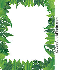feuille tropicale, fond