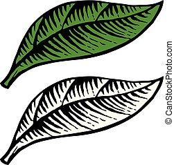 feuille, vendange, illustration, vecteur, (hand, dessiné, style), gravé
