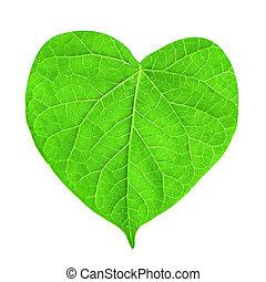 feuille verte, dans forme, de, coeur, isolé, blanc