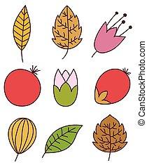 feuilles, éléments, coloré, nature