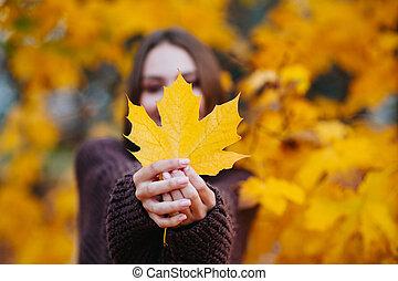 feuilles, érable, foyer, femme, automne, jeune, feuille, sélectif, jaune