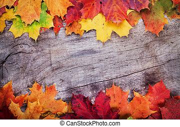 feuilles érable, sur, bois, surface