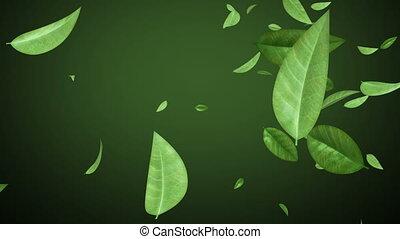 feuilles, animation., voler, fait boucle