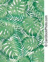 feuilles, arbre, exotique, paume, fond, vert