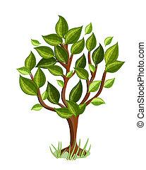 feuilles, arbre, lustré