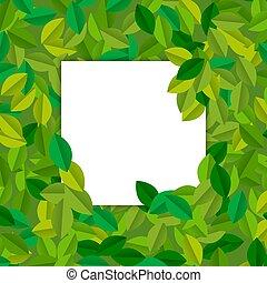 feuilles, arbre, papier, vert, vide, gabarit, carte