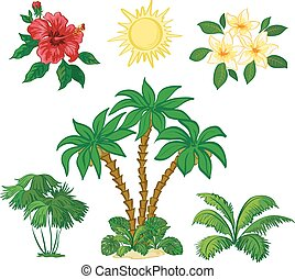 feuilles, arbres, paume, fleurs, soleil