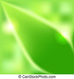 feuilles, arrière-plan vert, brouillé